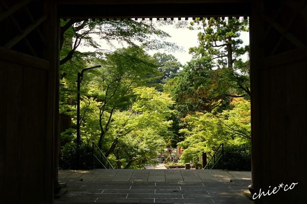 長月の円覚寺-279