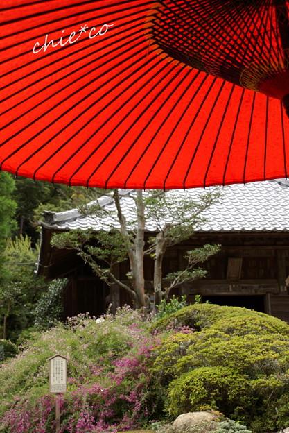 海蔵寺-128