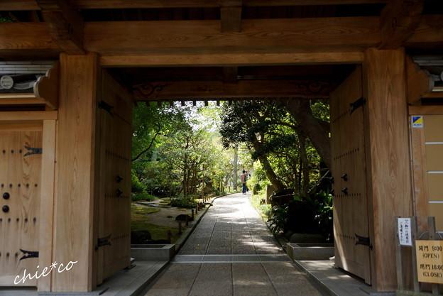 鎌倉-225