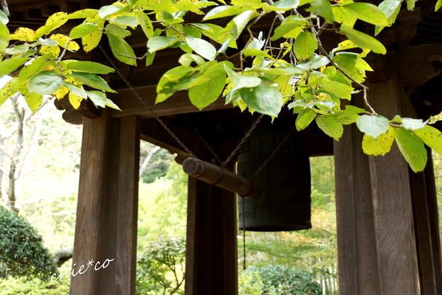 鎌倉-266