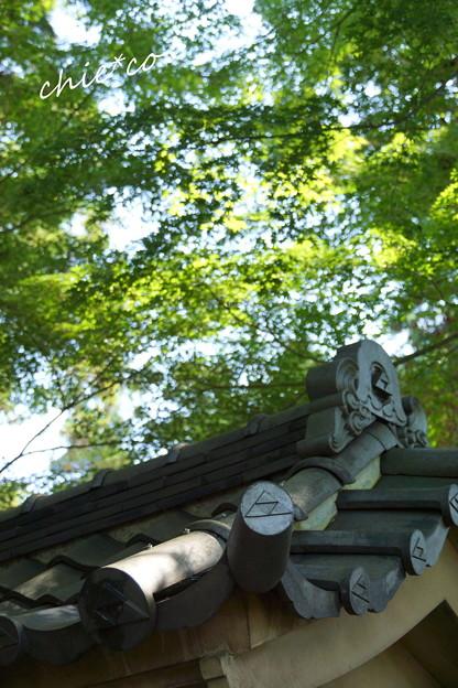 北鎌倉-226