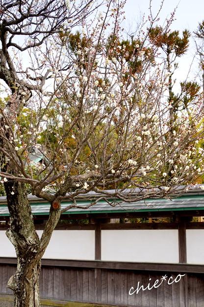 鎌倉-151
