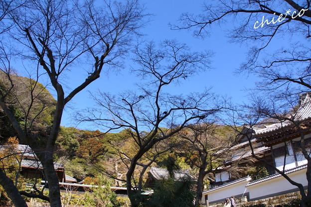 北鎌倉-397