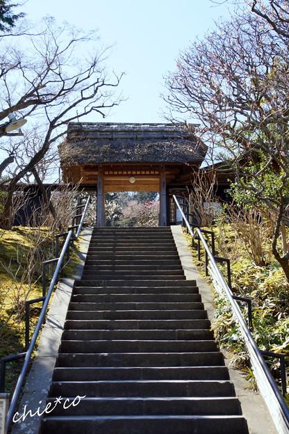 北鎌倉-395