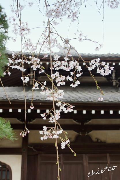 鎌倉-205
