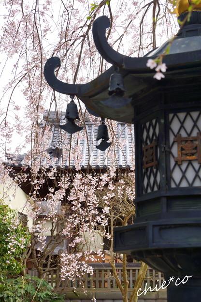 鎌倉-208