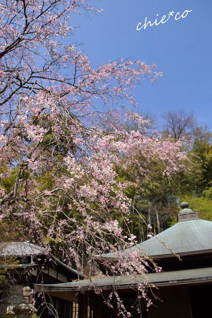 北鎌倉-305