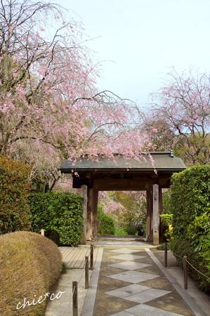 鎌倉-671