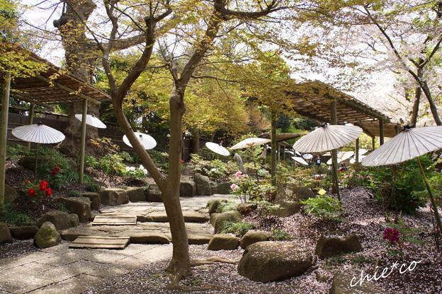 鎌倉-797