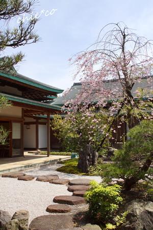 鎌倉-815