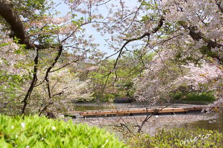 鎌倉-773