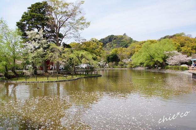鎌倉-810