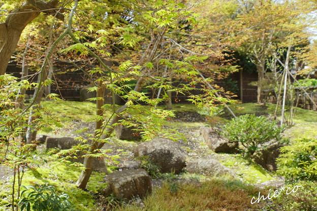 鎌倉-817