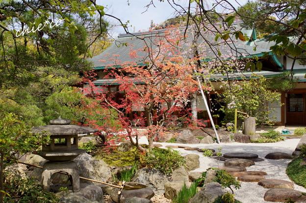鎌倉-819