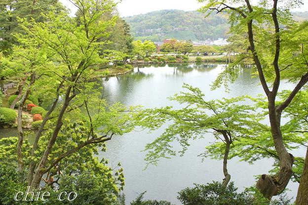 金沢-513