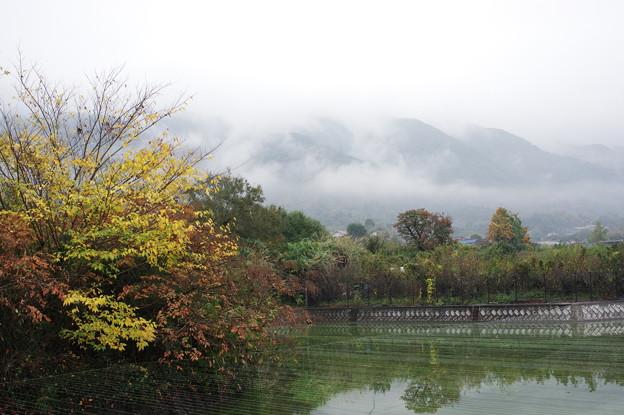 秋雨後の山麓