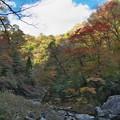 写真: 三段峡の秋(3)