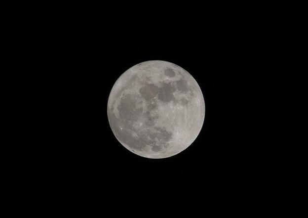 Photos: Xmasは満月