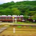 写真: トロッコ列車(渡良瀬渓谷鉄道)