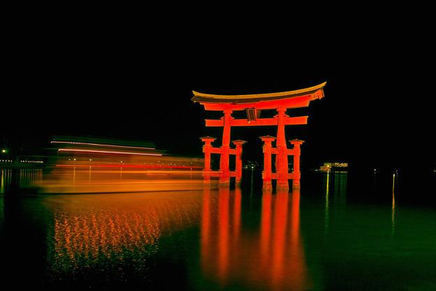 Photos: 夜の大鳥居