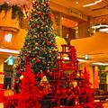 Photos: もうすぐクリスマス!