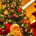 写真: メリークリスマス !