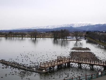 160316-05瓢湖