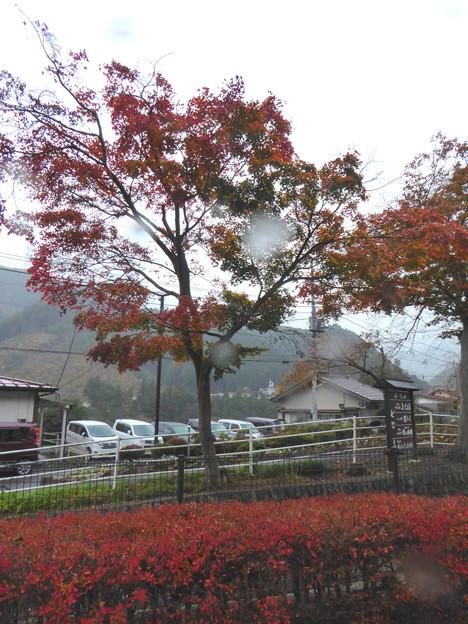 45沢井駅前