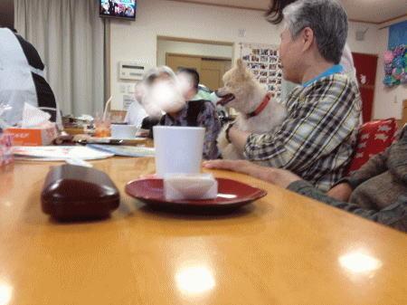 柚子とデイサービスの人たち