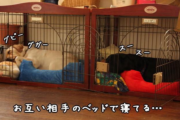 Photos: お疲れ様
