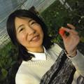 写真: 念願のイチゴ狩りに行ってきました!食べすぎてイチゴ腹になりました...