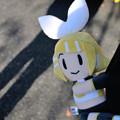 Photos: DSC_0091