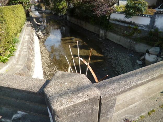 柳川お堀の水落ち