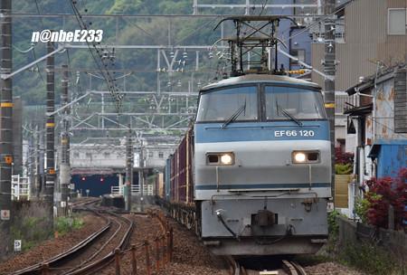 5060レ EF66 120+コキ