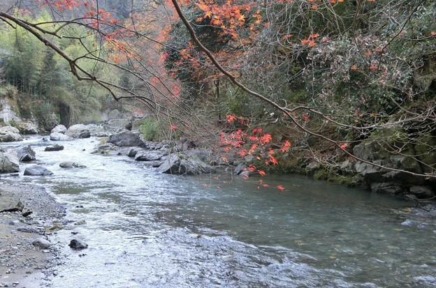 Photos: 1213阿武山10-1