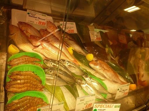 ナショナル~魚