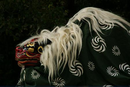 獅子舞、鎌倉!(111023)