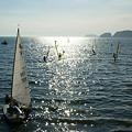 写真: 鎌倉の海0831s