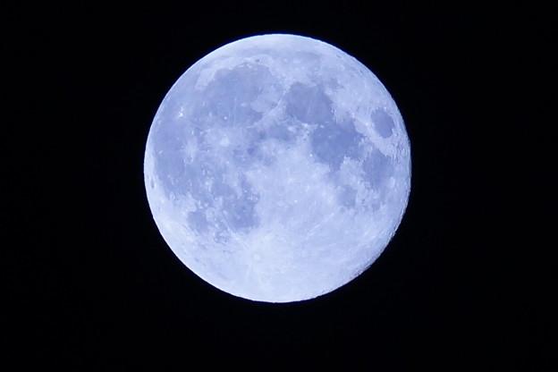 Photos: 秋の満月スーパームーン20140909k (1)