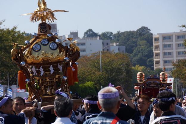 写真: 横須賀神輿パレード2014c
