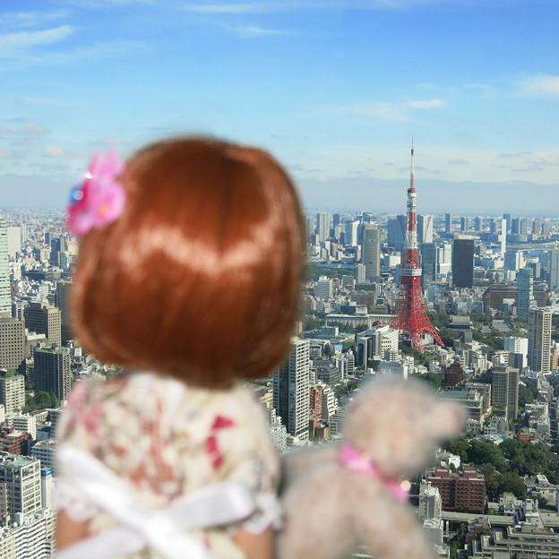東京タワーも見えたよ