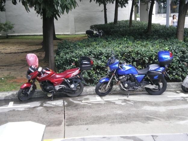 2008_1213_114212-バイク