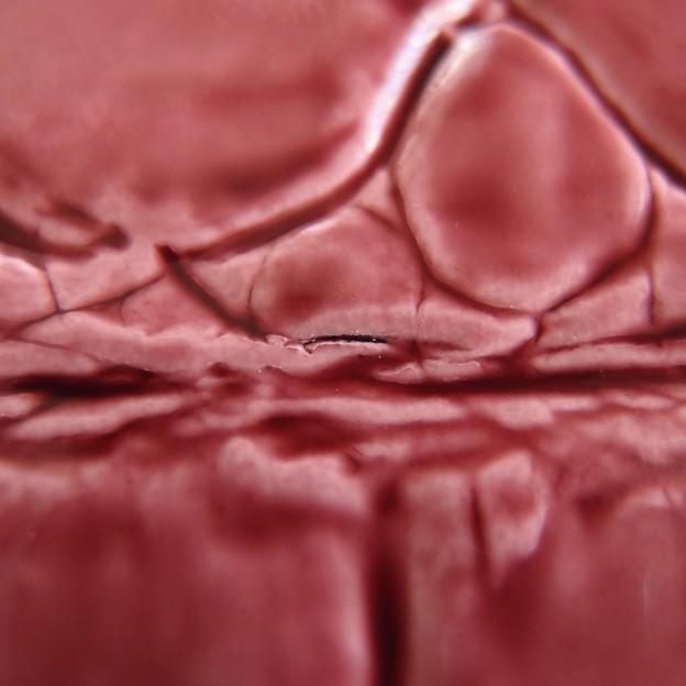 写真: アルカン/テールワニの長財布にあったシワによる傷