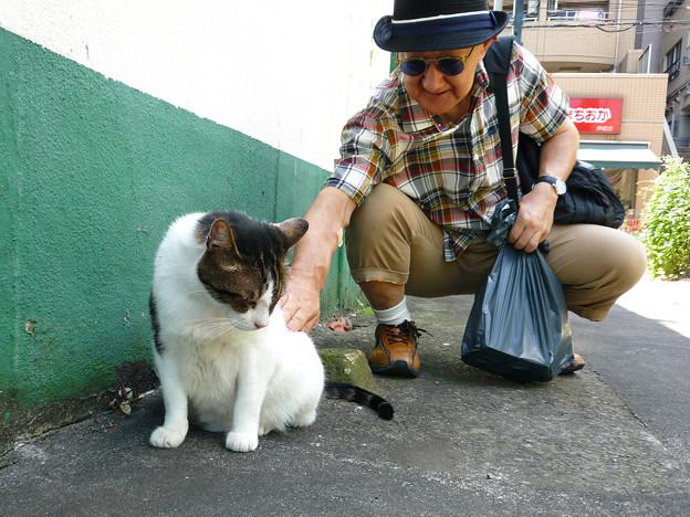 外猫おっととおじいちゃん。