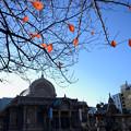 Photos: 紅葉と築地本願寺