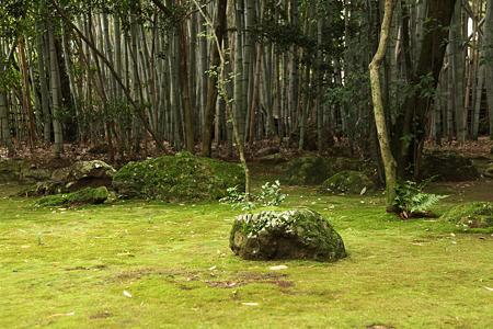大徳寺高桐院 - 2