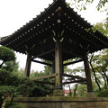 Photos: 豪徳寺 (15)