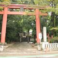 写真: 世田谷八幡宮