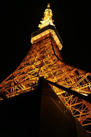 東京タワー (7)