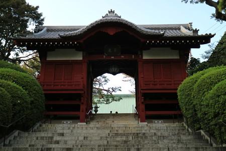護国寺 (1)